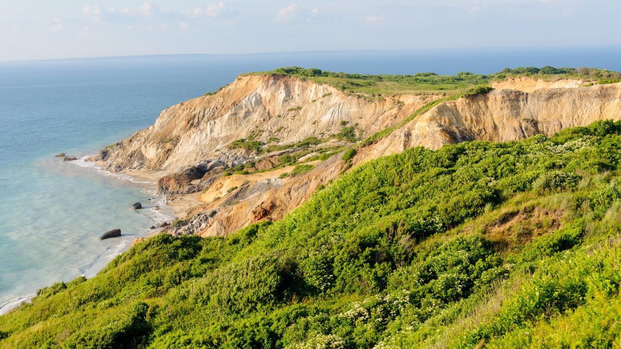 Rhode Island Landscape Association