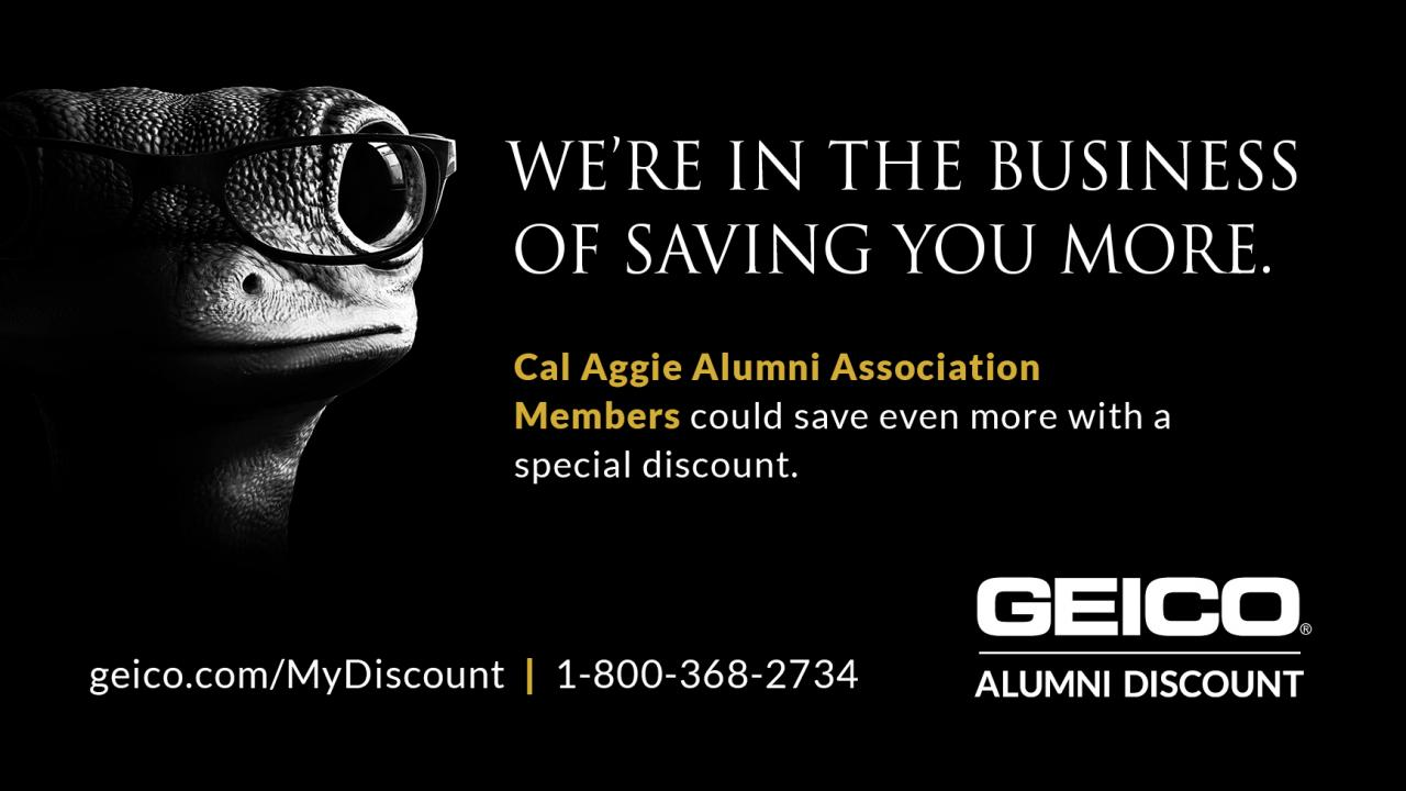 We're in the business of saving you more. Cal Aggie Alumni Association Members could save even more with a special discount. geico.com/mydiscount 1-800-2734 GEICO alumni discount