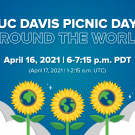 UC Davis Picnic Day Around the World on a blue background with clouds in the bottom corners and three sunflowers.